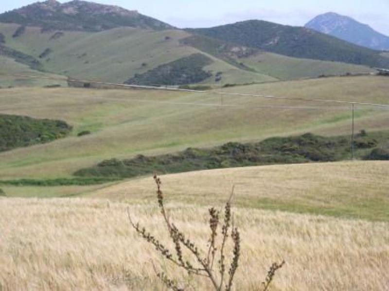 Vendita case e immobili a palmadula ss for Subito it molise attrezzature agricole