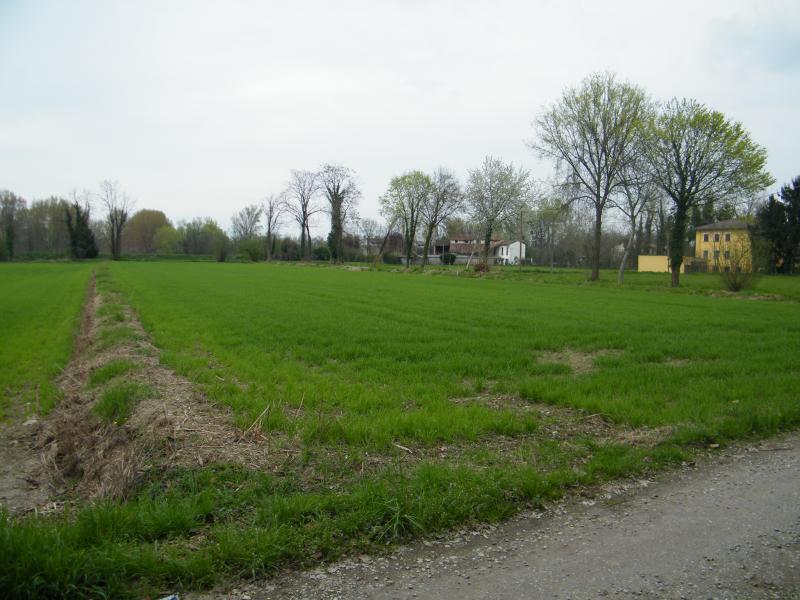 Vendita terreno agricolo irriguo for 6000 piedi quadrati a casa