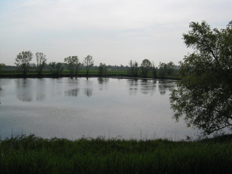 Laghi con rustico annesso rovigo for Come prendere in prestito denaro per comprare terreni