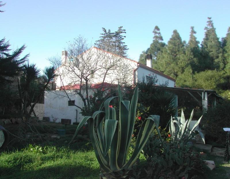 Carloforte in vendita villa con terrazza giardino terreno for Come prendere in prestito denaro per comprare terreni